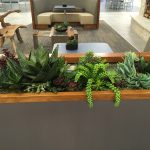 artificial succulent design (6)