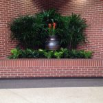 brick wall plant installation