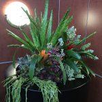 artificial succulent design