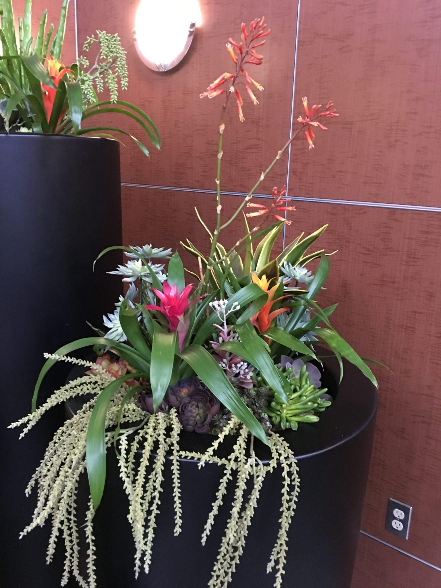 artificial succulent design (13)