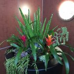 artificial succulent design (14)