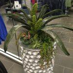 artificial succulent design (3)