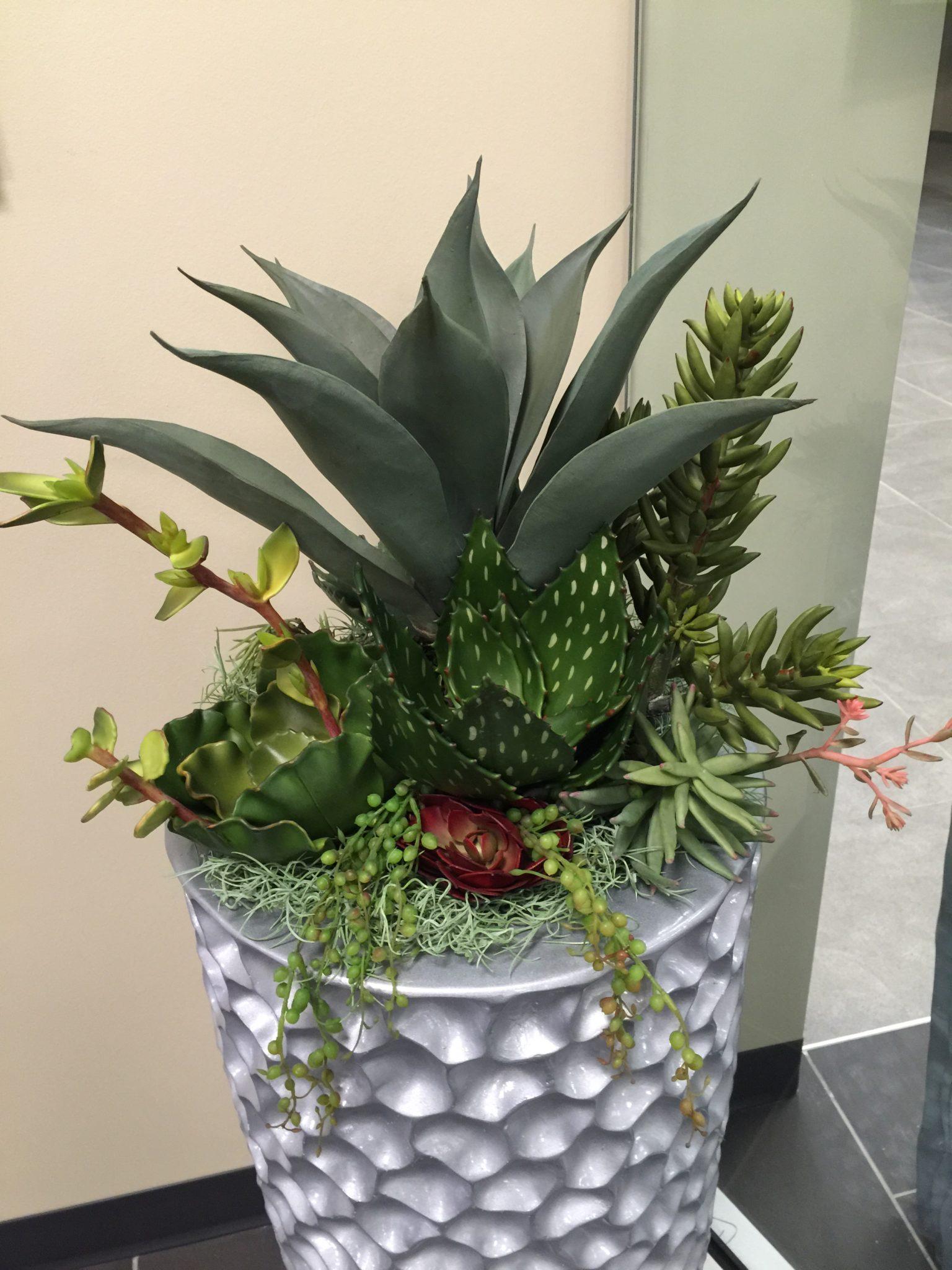 artificial succulent design (4)
