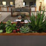 artificial succulent design (5)