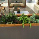 artificial succulent design (6)