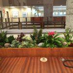 artificial succulent design (9)