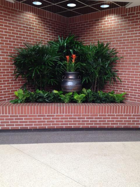 brick wall plant installation