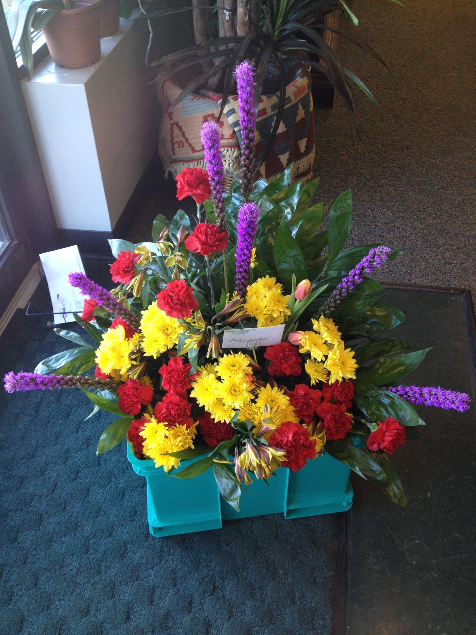 weekly cut flower rotation (3)